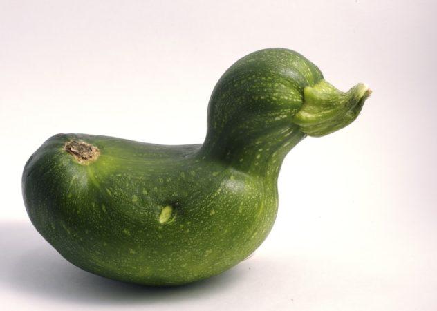 Fruits et légumes moches: quand naturel n'est pas normal
