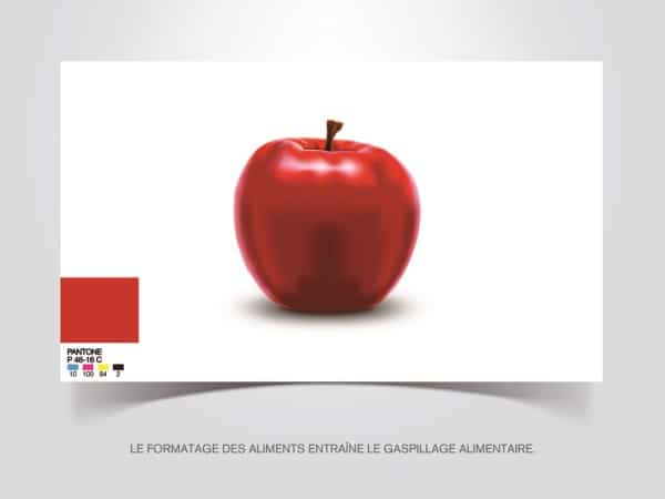 formatage des aliments gaspillage alimentaire