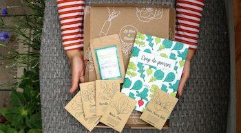 offrir box à planter Noël