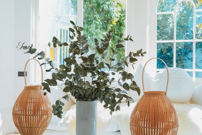 parfum d'intérieur tiges d'eucalyptus