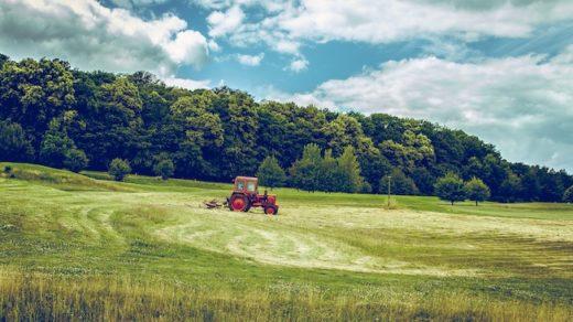 bio agriculture sans pesticides