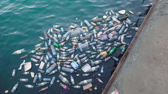 pollution plastique et objets à usage unique