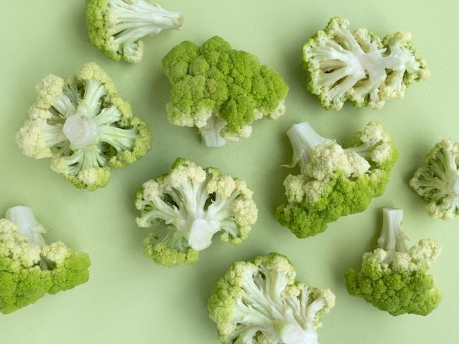parler d'écologie autrement roman feel food
