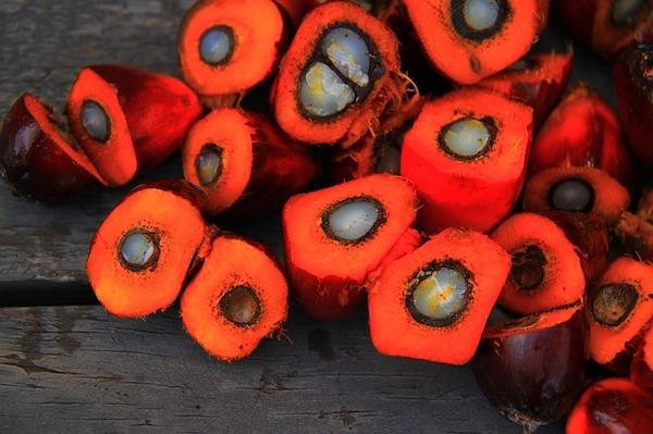 savon de marseille huile de palme