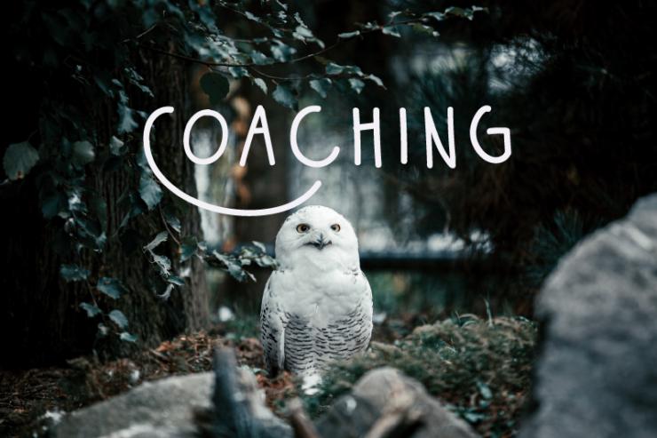 coaching entrepreneurs artistes leaders