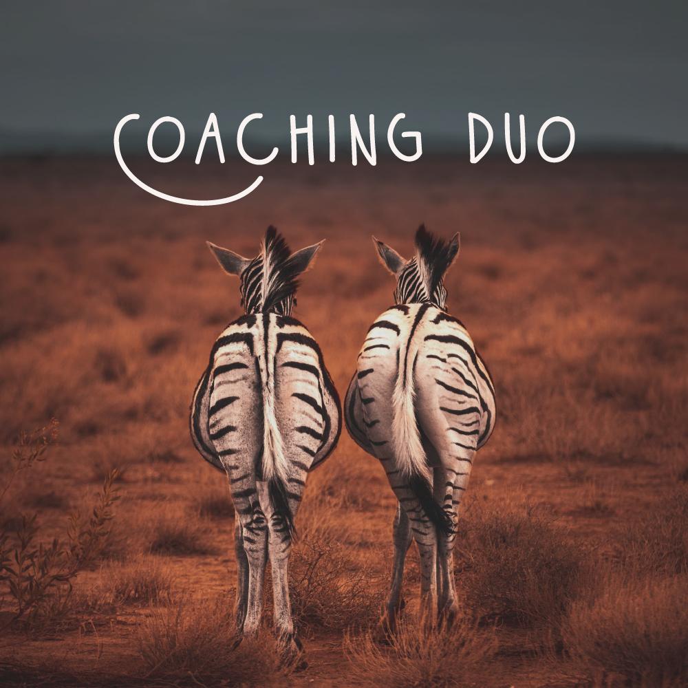 coaching entrepreneurs en duo
