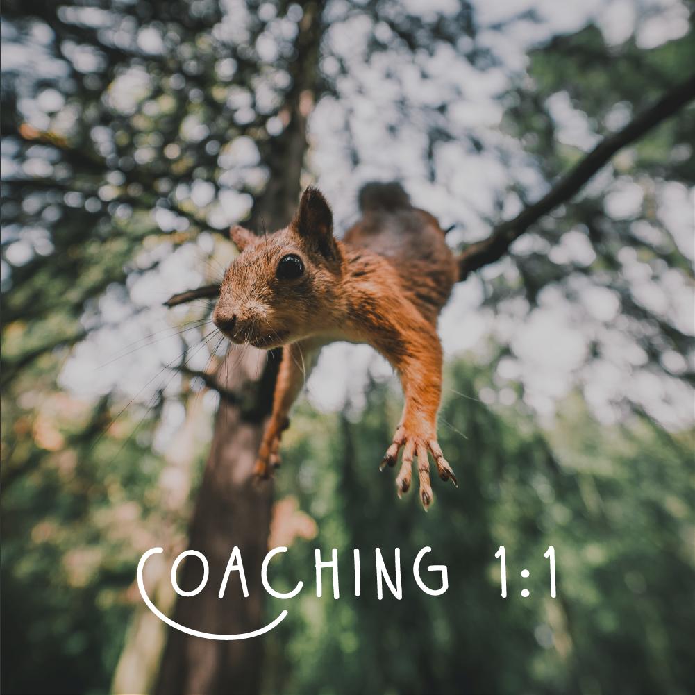 coaching professionnel individuel entrepreneur artiste