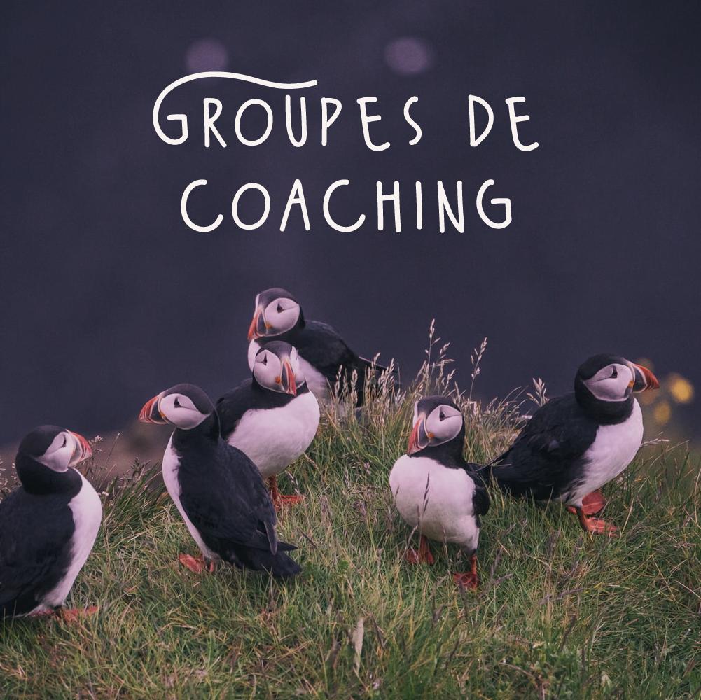 coaching codev groupe entrepreneurs